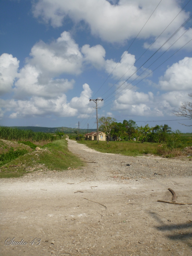Cane worker housing