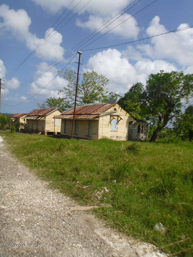 Cane worker housing