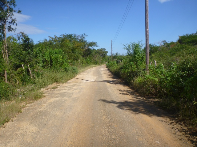 The road from Treasure Beach to Black River